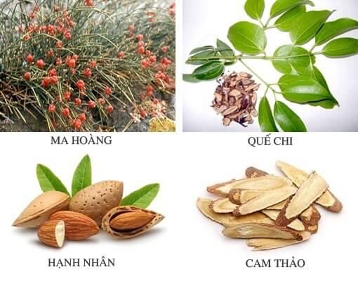 Ma Hoàng Thang Bài Thuốc Chữa Ho Hen, Hen Suyễn